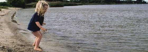 Die Milli - Die Umgebung bietet eine Badestelle mit hellem Sandstrand